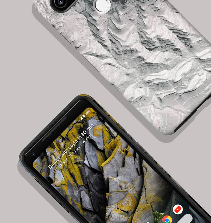 Google Earth Live Case for Pixel 2 XL