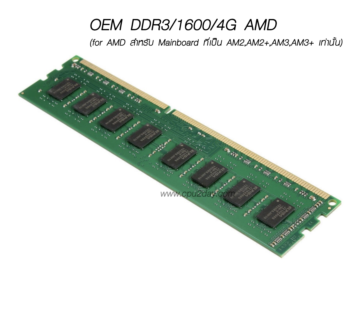 OEM DDR3/1600/4G (for AMD สำหรับ Mainboard ที่เป็น AM2,AM2+,AM3,AM3+ เท่านั้น)