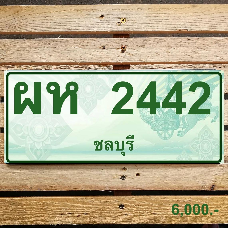ผห 2442 ชลบุรี