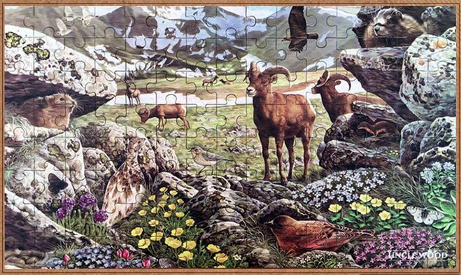 จิ๊กซอว์ภาพศิลป์ระดับโลก Jigsaw Puzzle World class artists - Alpine Tundra
