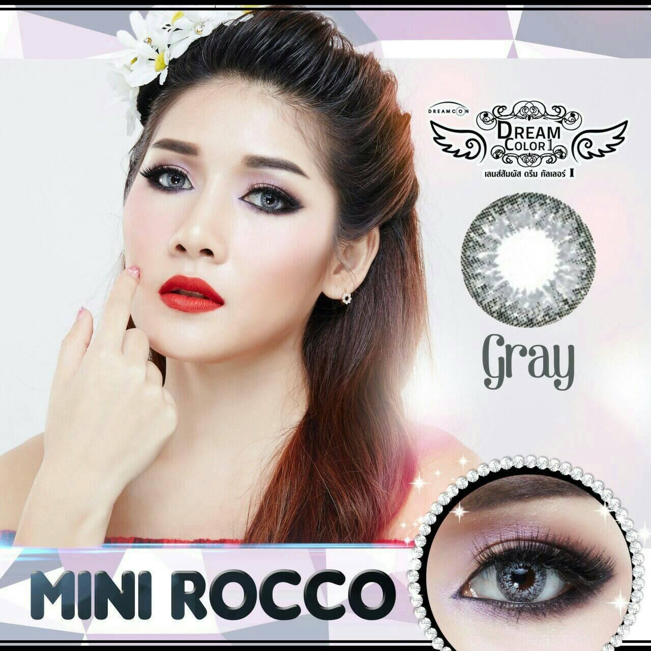 Mini Rocco Gray Dreamcolor1เลนส์นิ่มใส่สบาย คอนแทคเลนส์ ขายส่งคอนแทคเลนส์ ขายส่งBigeye Bigeyeเกาหลี