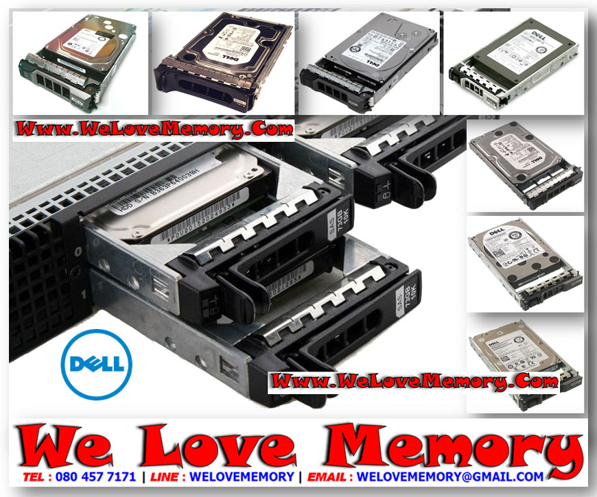 0C975M ,DELL 300GB 10K RPM 6G SFF SAS HDD