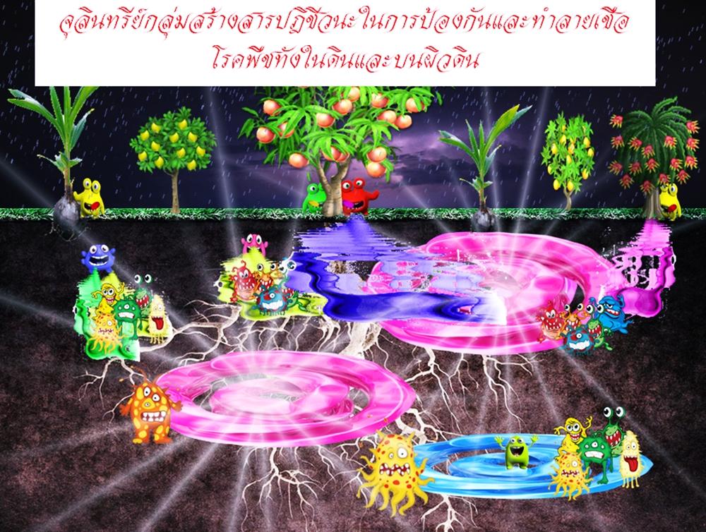จุลินทรีย์ดิน,ปุ๋ยอินทรีย์,ปุ๋ยหมัก,จุลินทรีย์ในดิน,จุลินทรีย์มีประโยชน์,จุลินทรีย์ดินป่า,จุลินทรีย์ในธรรมชาติ,จุลินทรีย์หน่อกล้วย,เมธาไรเซียม,พาซิโลมัยซิส,บาซิลลัสซับทีลิส