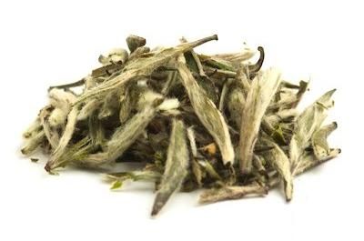 สารสกัดชาขาว White Tea Extract 100 cc.