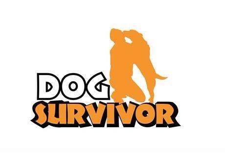 Dog Survivor Thailand TV