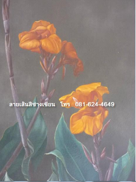 ภาพดอกไม้งามตามธรรมชาติ