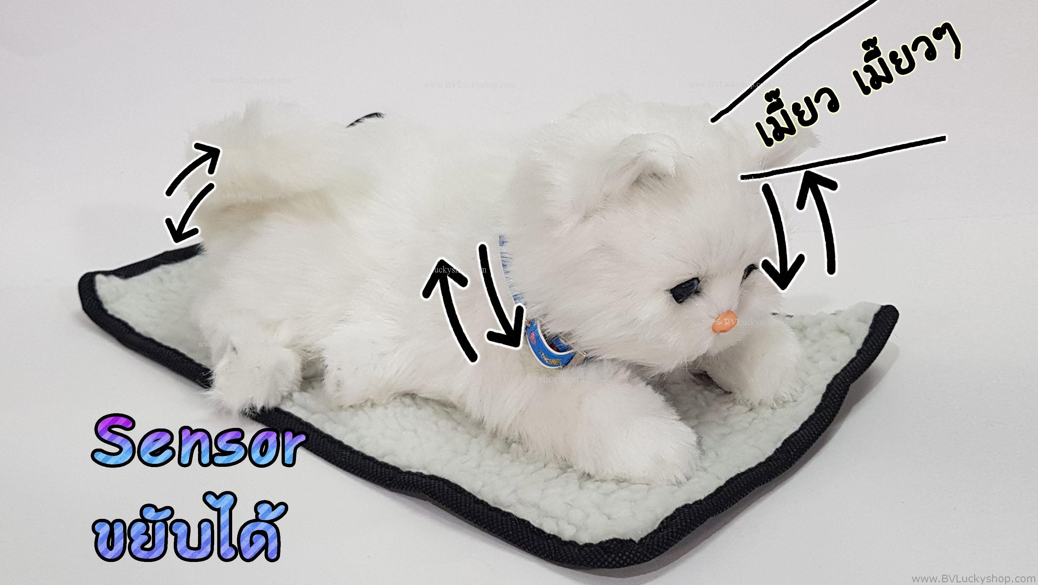 ตุ๊กตาแมว เซ็นเซอร์จับมือผ่าน แล้วส่วนหัวและหางจะเคลื่อนไหว และมีเสียงร้องเมี้ยวด้วย [Cat-SS4]