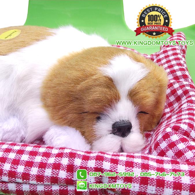 ตุ๊กตาหมานอนหลับ สีเหลืองขาว [เบาะแดง] 19x24 CM