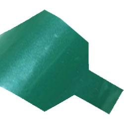 ts metallic forest green