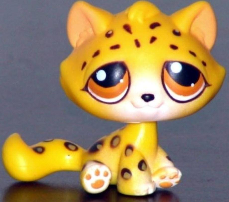 แมวลายเสือชีต้า สีเหลือง #385 (หายากมาก)
