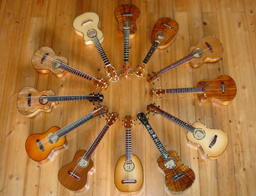 อูคูเลเล่ พิษณุโลก ukulele Phitsanulok