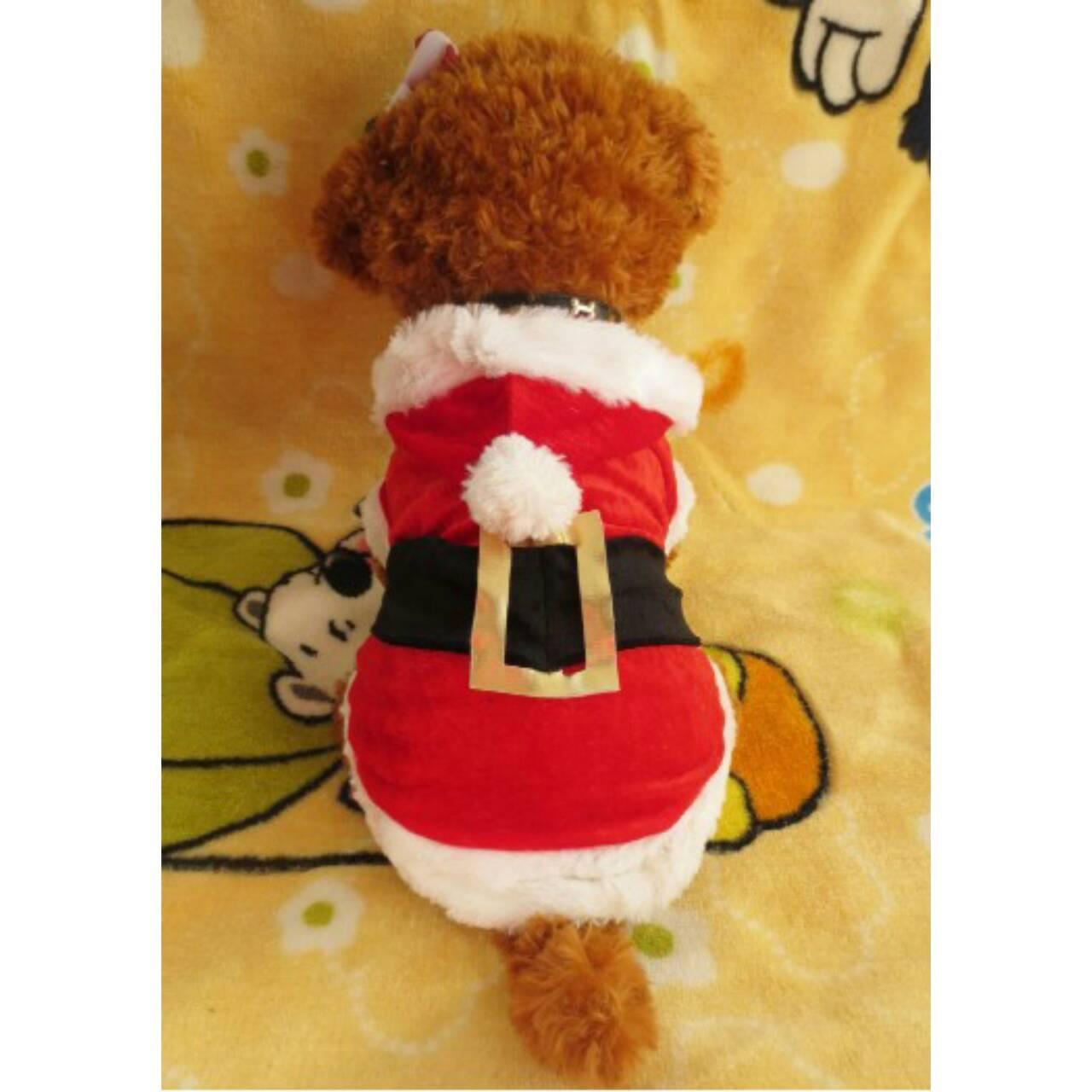 ชุดแฟนซี ซานต้า