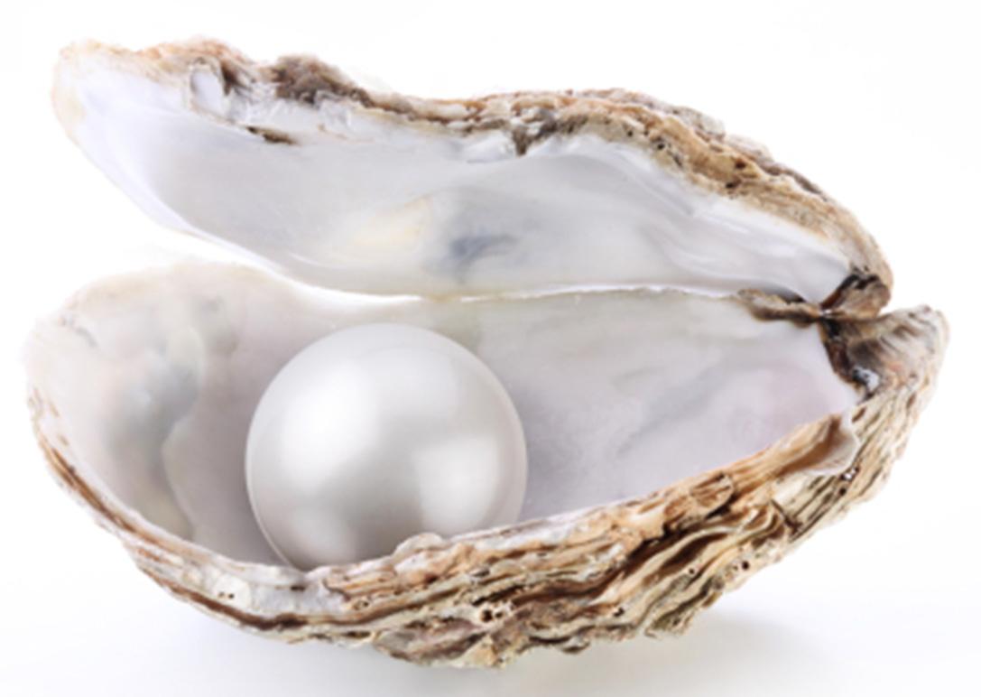 สารสกัดได้จากไข่มุกธรรมชาติ ช่วยฟื้นฟูผิวหลังจากได้รับรังสี UV ทำให้ผิวขาวขึ้น โดยการป้องกันผิวหมองคล้ำจากแสงแดด