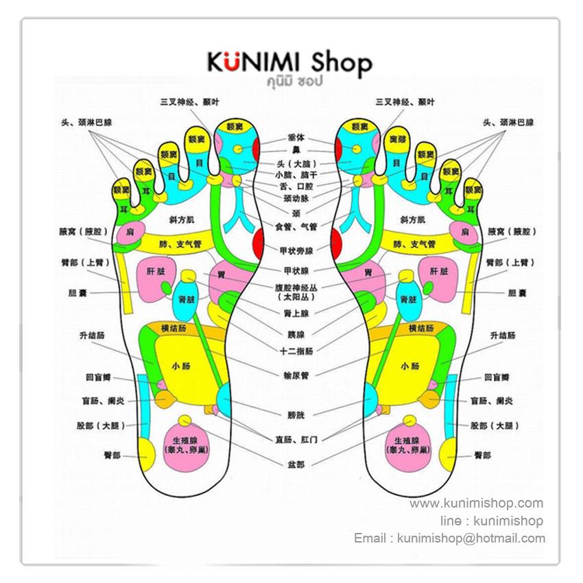 ที่นวดฝ่าเท้า เหยียบถูนวด แก้ปวดเมื่อย จากการเดิน หรือ ยืนนานๆ ทำให้รู้สึกผ่อนคลาย ใช้ได้บ่อยครั้งตามต้องการ ขนาดกระทัดรัด สามารถพกพาไปในที่ต่างๆได้ครับ